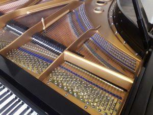 Tavola armonica, martelli e corde del pianoforte a coda Bluthner in vendita a Milano